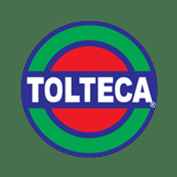 edificaciones dinamicas logo tolteca