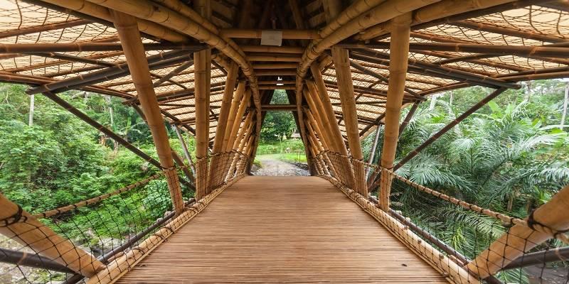 construcción de bambu